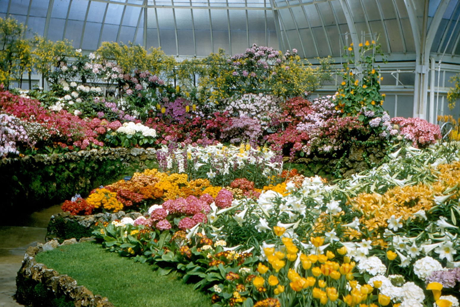 Belle Isle Scripps Conservatory, April 1956